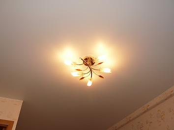 Фото матового потолка в гостиной